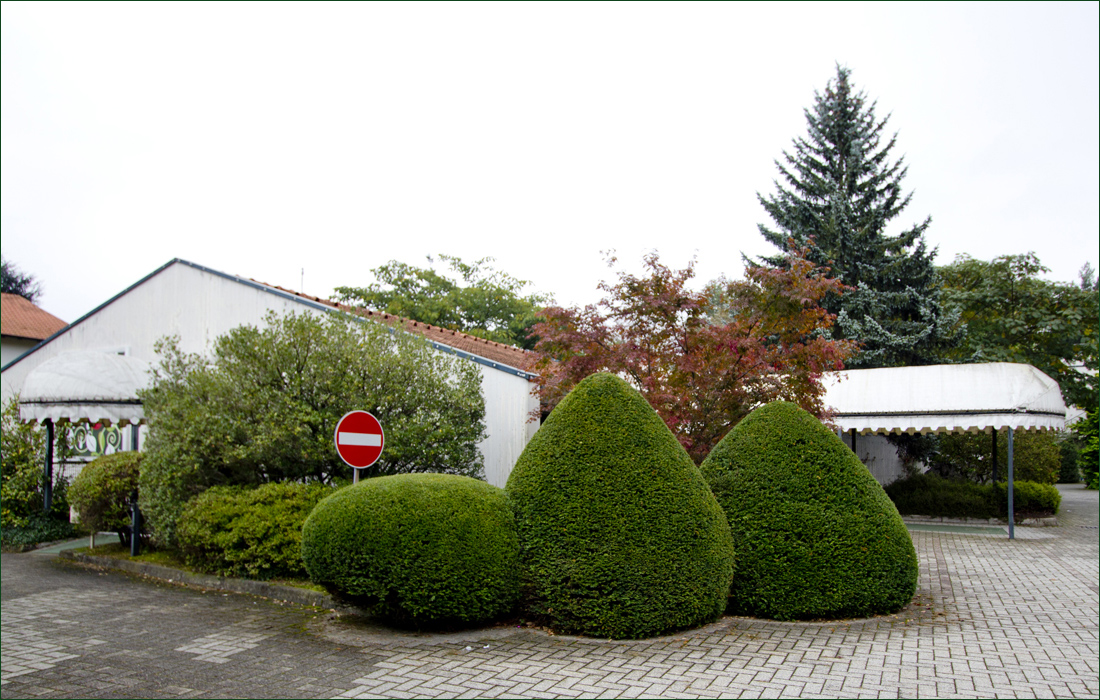 green-motel-malpensa-03